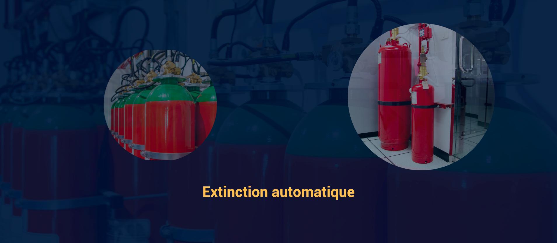 https://www.eris-di.com/wp-content/uploads/2021/07/Extinction_2.png